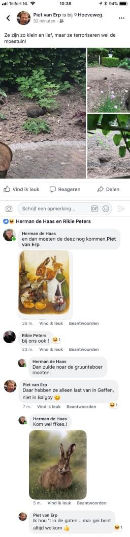facebook-Herman